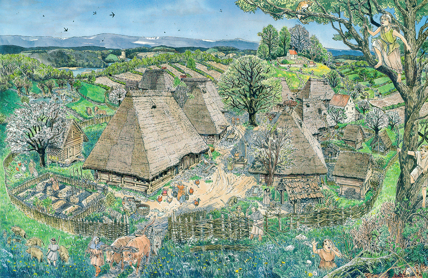 Dorf - Alltag im Mittelalter